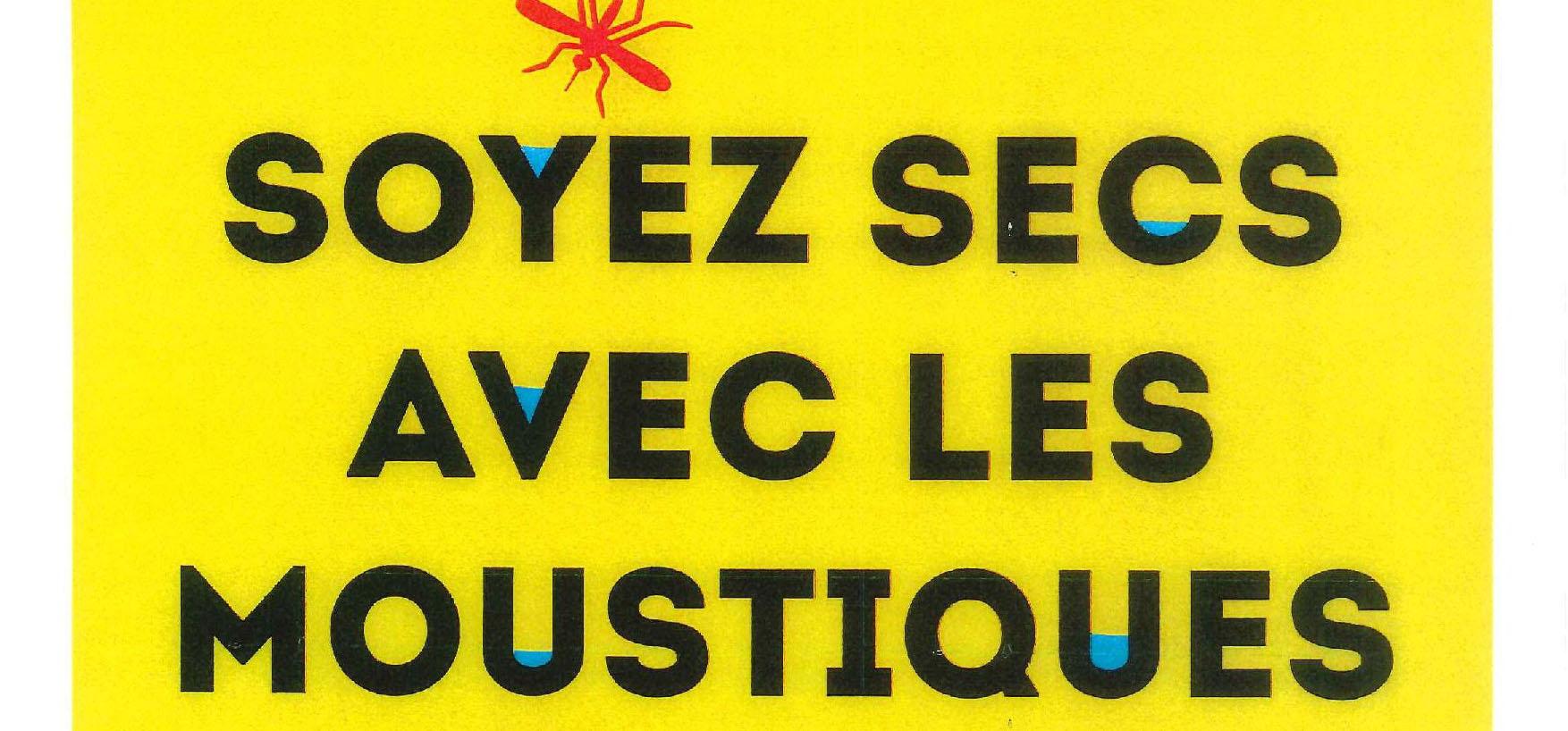 Moustiques_PS